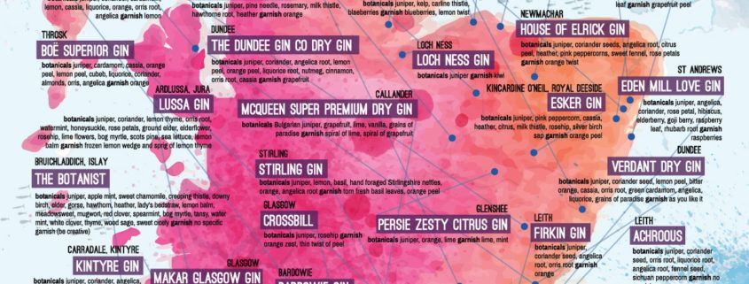 Gin Infographic